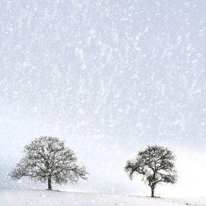 Harsh Winter - Uncredited